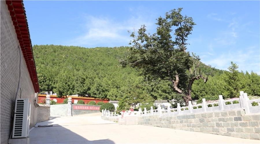 九里山公墓园区环境